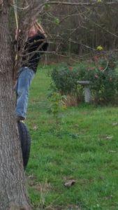 dangerous times on a tire swing